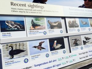 flexible interpretive panel Monterey Bay Aquarium